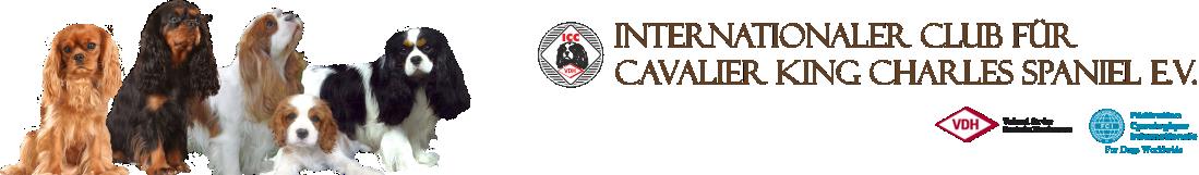ICC Webseiten Header