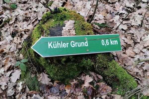 wintertreffen_kühler_grund_2020_02_16_01397124EDE-DCF3-35EC-5FF2-FBE4D6B25BAE.jpg